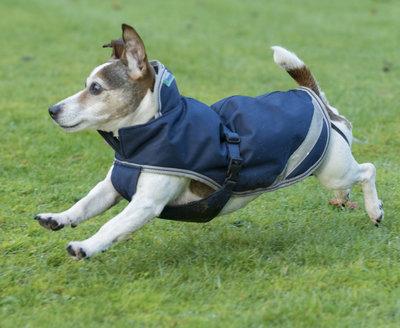 Freedom Dog Rug 70cm Navy/Silver