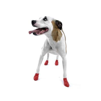 Pawz Dog Small (12)
