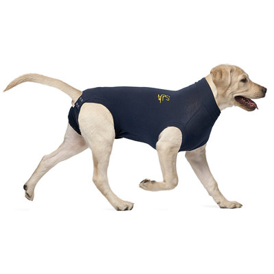 Medical Pet Shirt for Dogs
