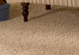 Carpet and Fabric Cleaners