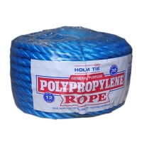 BLUE POLYROPE 12MM X 30MTR COIL