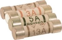 Fuse 5 Amp Plug Top