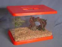 Pennine Plastic Fish Tank & Hood x 6