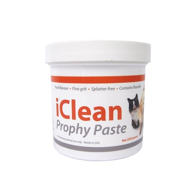 Prophy Paste iClean 255g iM3