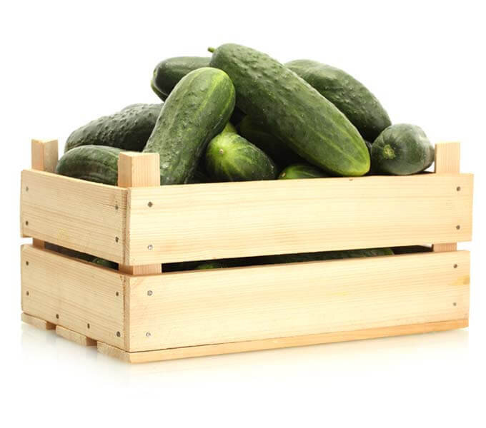 Box Mini Cucumber