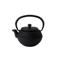 Takara Cast Iron Teapot c/w Filter 12.25oz 35cl Carton of 12