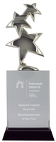 30cm Metal Star on Crystal Award (Satin Box)