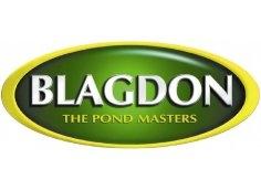 Blagdon