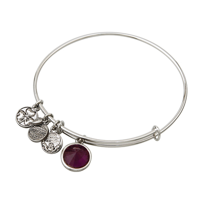 RHODIUM BIRTHSTONE CHARM BANGLE - FEBRUARY