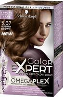 Color Expert Auburn Brown 5.67