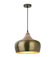 Amiel 1 Light Pendant, Aged Gold with Real Wood Cowl | LV1802.0047
