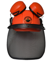 Chainsaw Safety Helmet c/w Mesh Visor Muffs - RT6-888