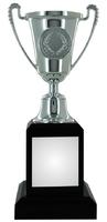 19cm Silver Plastic Cup Trophy (VP01B)