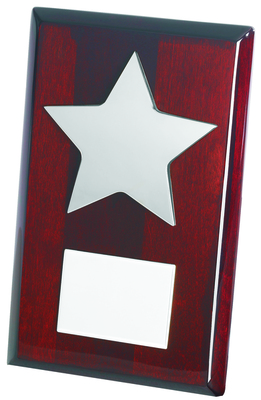 Silver Star on Wood Plaque 20cm