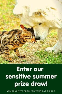 Enter our 'Sensitive Summer' prize draw