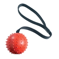 Classic Rubber Pimple Ball on Rope 70mm x 1
