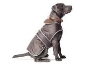 "Ancol Stormguard Dog Coat - Chocolate Medium 14""-18"" x 1"
