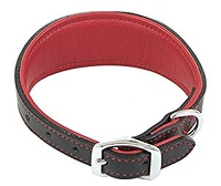 """Outhwaite Padded Greyhound Collar- Small Red/Black 11-14"""" x 1"""