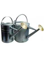 2 Gallon Galvanised Watering Can with Rose (WT908)
