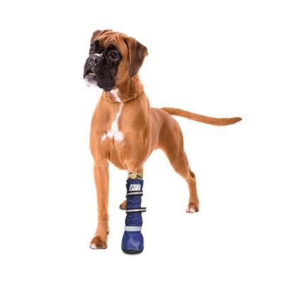 Medical PetS Boot