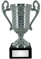 15cm Silver Plastic Cup Trophy (V202S)