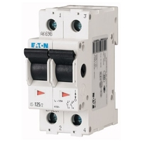 Switch 2 Pole Isolator