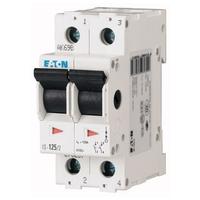 Switch 2 Pole Isolator