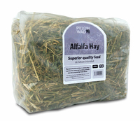 Pillow Wad Handy Alfalfa Hay 500g x 5