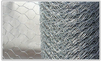 600mm X 50mm X 10Mtr Hexagonal Wire Mesh Roll