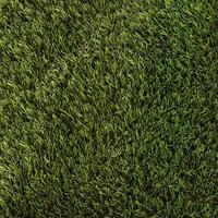 DAISY GRASS 30mm/22 STITCH 4M