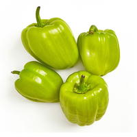 Peppers Green (Dolma)-(400gr)