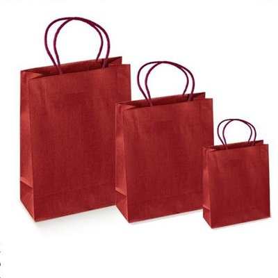 Luxury Burgundy bags