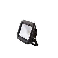 Robus Remy 10W LED Floodlight IP65 4000k