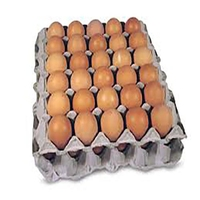 Eggs Free Range Egg (1xTray)-(30)
