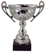 16cm Boxed Silver Cup
