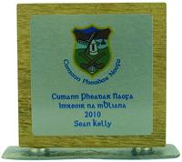 15cm Full Colour Award on Natural Wood (Inc P