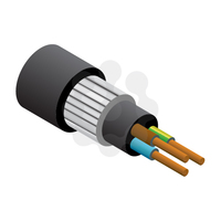 3x6.0mm SWA PVC Cable
