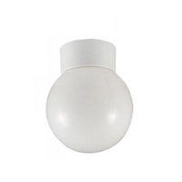100W Ceiling Globe Fitting BC