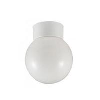 100W Ceiling Globe Fitting BC