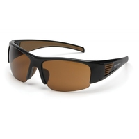 CARHARTT EGB5DT PAIR THUNDER BAY GLASSES