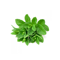 Fresh Mint (Bunch)
