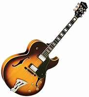 Washburn Hollowbody J3TS