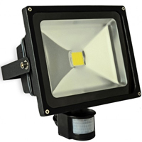 30 WATT DELTECH LED FLOOD CW C/W PIR 2400LM(240W)