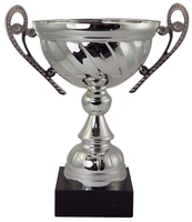 14cm Boxed Silver Cup