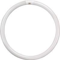 60W Circular Fluorescent Tube Warm White