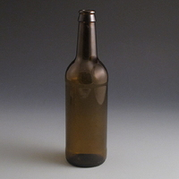 500ml Beer Bottle