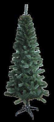 7ft Aspen Slim Green Tree