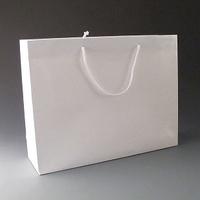 Large Luxury White Gift Bag