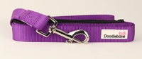 Doodlebone Bold Nylon Lead 20mm x 1.2m - Purple x 1