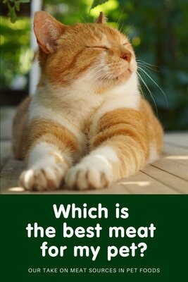 Which is the best meat for my pet?